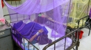 দেশে গত ২৪ ঘণ্টায় ডেঙ্গু আক্রান্ত আরও ২২১ জন