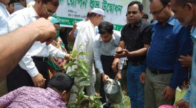 দিঘলিয়া উপজেলা প্রশাসন ও প্রেসক্লাব কতৃক বৃক্ষ রোপন