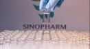 ২১ অক্টোবর আসছে সিনোফার্মের ৫৫ লাখ টিকার বড় চালান